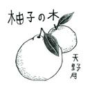 柚子の木/天野月子