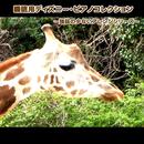 睡眠用ディズニー・ピアノコレクション ~強弱の少ないアレンジシリーズ~/浜崎 vs 浜崎