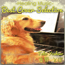 Best Cover Selection ~Healing Music~/吉野とぼ