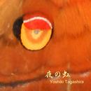 夜の虹/Yoshiki Tagashira