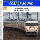 [0514] 東海道本線 新快速 (豊橋~大垣) 117系/鉄道走行音 コバルトサウンド