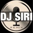 洋楽 BEST HITS! ~カバー・セレクション~/DJ SIRI