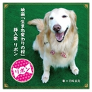 リボン (映画『生まれ変わりの村』挿入歌) (カラオケ)/岩崎良美