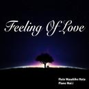 Feeling of Love/秦 正彦