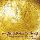 Singing Bowl Healing/五十嵐奏喜