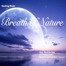 Breath of Nature/秦 正彦