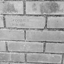 Singing to a Brick wall/石井健士