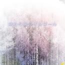 眠りの森のオルゴ~ル/the Joyful sounds