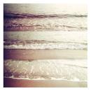 Water's Edge/[.que]