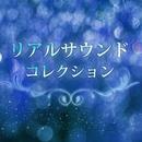 リアルサウンド コレクション Vol.4/RiNG-O Melody