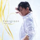 Evergreen/神樹照幸