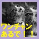 ワンちゃんあるで!!/三十郎