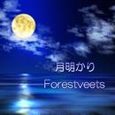 月明かり/Forestveets