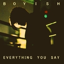Everything You Say/Boyish