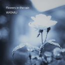 Flowers in the rain/WATARU