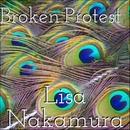 Broken Protest/Lisa Nakamura