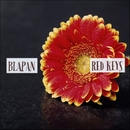 Red Keys/Blapan