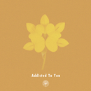 Addicted To You (feat. Nao Kawamura)/AmPm