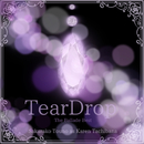 TearDrop-The Ballade Best/藤野櫻子