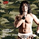YAMATO SPIRIT/ACMA