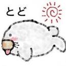 マジカルエマージェンス / smile for you/Kenji Kishimoto
