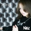 Why/Noz