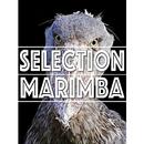 SELECTION MARIMBA ~デフォルトマリンバを『◯◯風』にアレンジしたら・・・シリーズ/Jukebox ☆☆☆ MAGIC