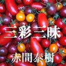 三彩三昧/赤間泰樹