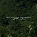 Nature sound - 癒しの森 マノア ハワイ/Deep Nature Recordings