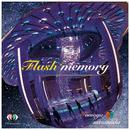 Flash memory/TomoyaTsutsumida