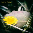 Look For The Light/夕蘭