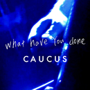 What Have You Done/CAUCUS