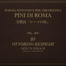 Pini di Roma / Pines of Roma -Pini di Roma / Pines of Roma-/大島康雄