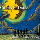 Cosmo El Dorado/stunning under dog