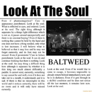 Look At The Soul/BALTWEED