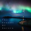 安らぎと癒しのリラックス・オーロラサウンド -The Sounds Of Aurora-/Natural Healing