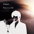 Pray to a life/Pelikan