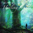 癒しの雨の音 -Healing Sounds-/吉直堂