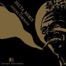 DELTA (REMIX) [feat. Yosuke Tominaga]/Reggaelation Independance