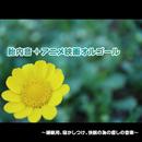 胎内音+アニメ映画オルゴール ~睡眠用、寝かしつけ、快眠の為の癒しの音楽~/浜崎 vs 浜崎