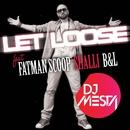 Let Loose (feat. Fatman Scoop, Shalli & B&L)/DJ Mesta