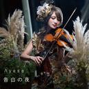 告白の夜/Ayasa