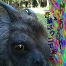 1/MT-SUZUKI & 吾輩はウニである、