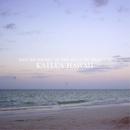 Nature sound - 癒しのビーチ カイルア ハワイ/Deep Nature Recordings