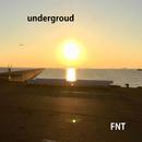 underground/dodo