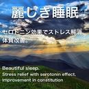麗しき睡眠 ~Beautiful sleep~/Natural Note