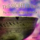 The secret story/五十嵐奏喜
