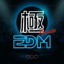 極EDM - Top Club Hits/Various Artists