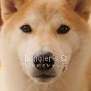 セレクション/BUNGLER'S OMEGA