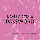 PASSWORD (KAYLLY Remix)/Kiichi & AGURI